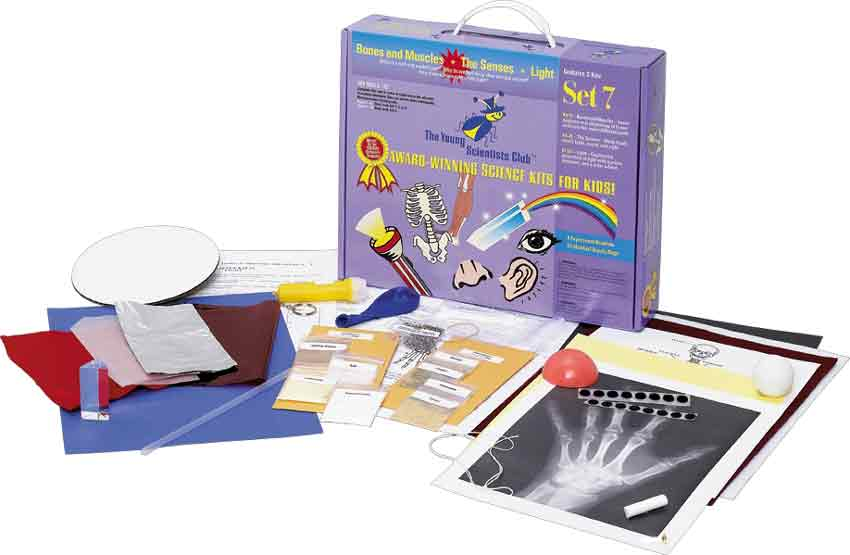 Awesome Bones, Muscles & Senses Science Kit by Educational Toys Planet