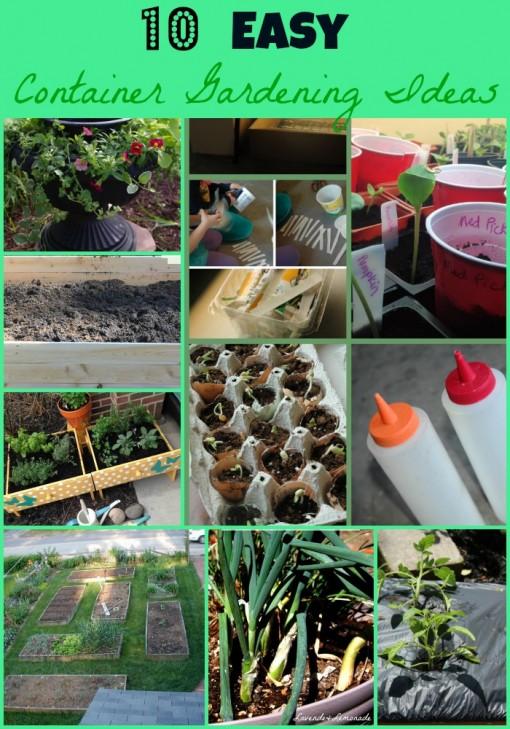 10 Container Garden Ideas