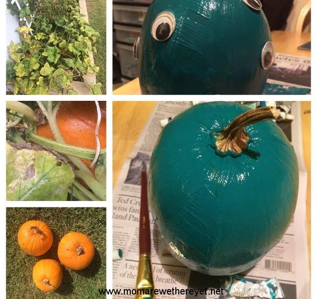 THE TEAL PUMPKIN PROJECT: How You Can Do It Too