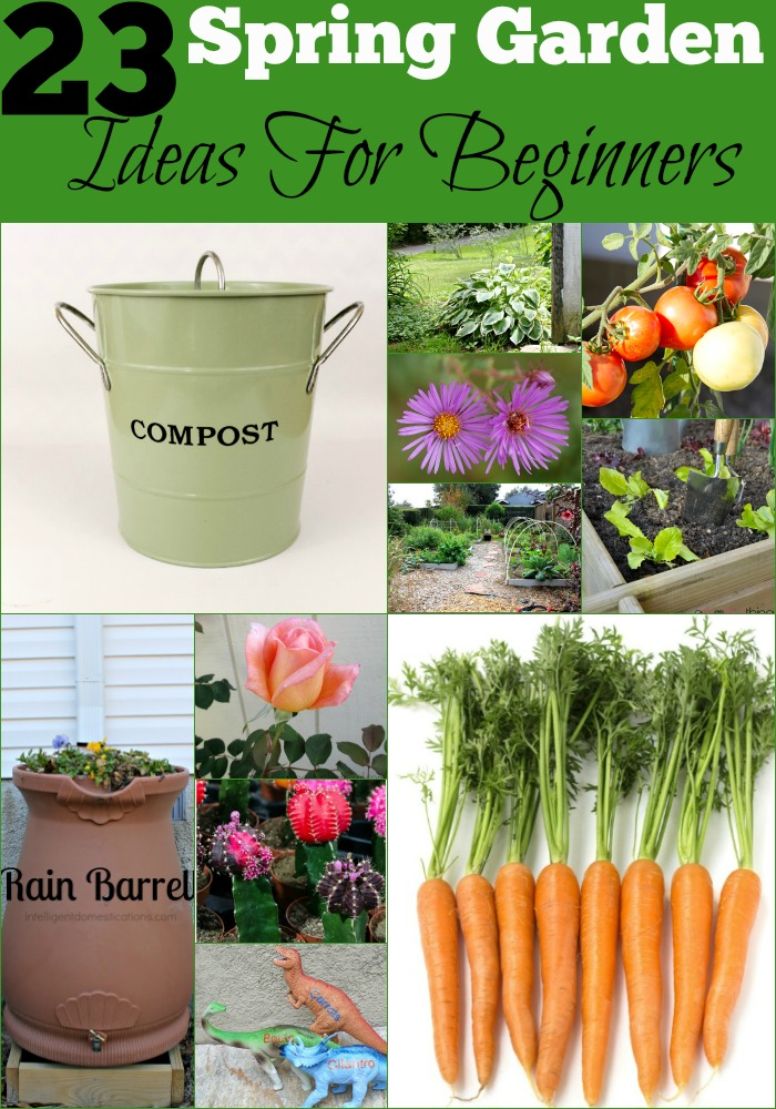 23 Spring Garden Ideas For Beginners
