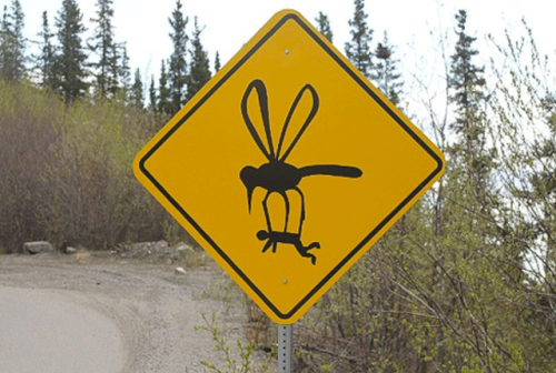 Mosquito Alaska Road Sign