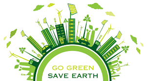 20 Easy Ways To Make Your House 'Green'