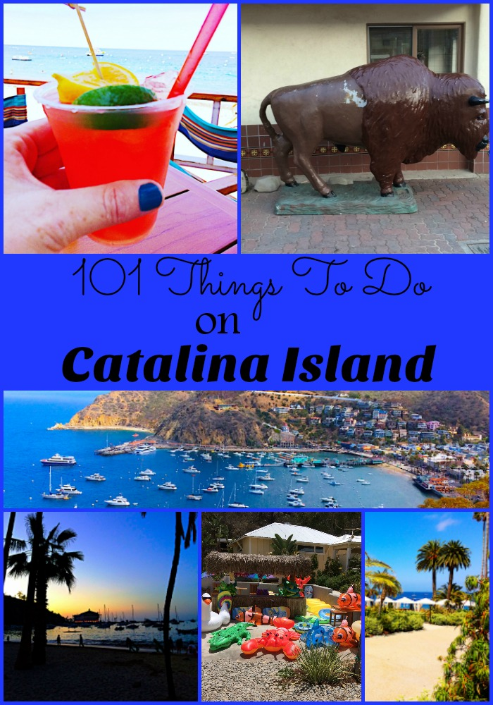 101 Things To Do On Catalina Island