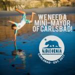 Kidifornia Fun For Families In Carlsbad